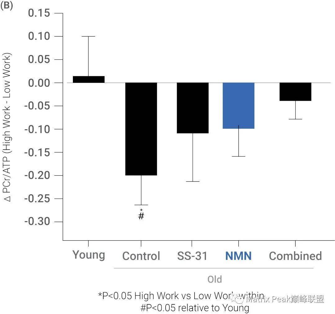 探索分子SS-31和NMN协同改善老年心脏功能的逻辑原理!插图2
