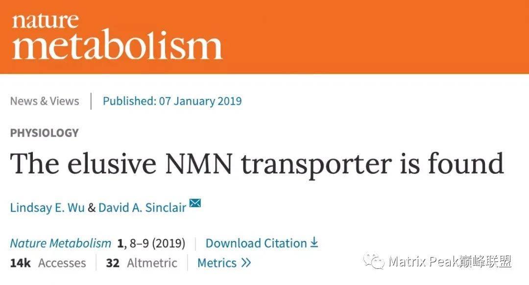 关于NMN与NR,是如何作用于人体的!插图4