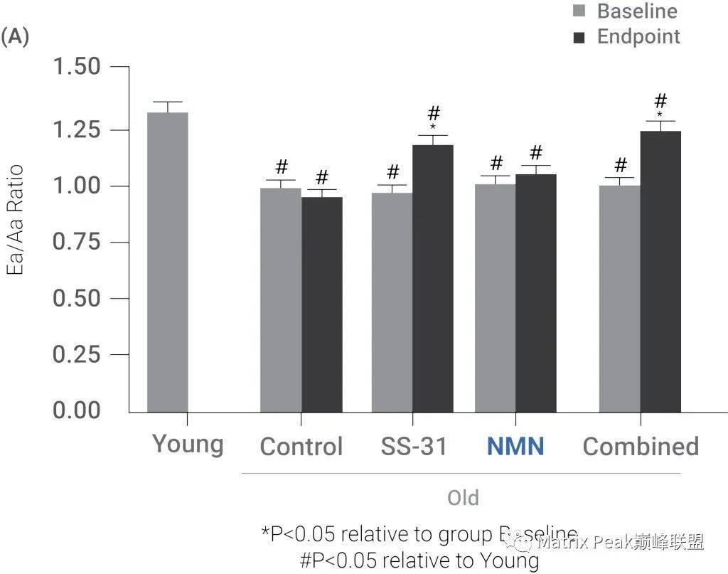 探索分子SS-31和NMN协同改善老年心脏功能的逻辑原理!插图3